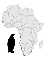 Brillenpinguin Afrika