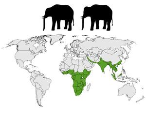Elefanten Verbreitung