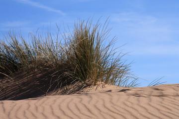 Exmouth Sand Dunes