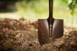 Shovel in soil. Closeup, shallow DOF. - 31347604