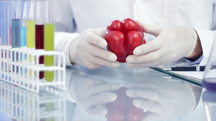 Scientist hands examining pepper and writing results in notepad