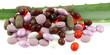 médicaments et compléments alimentaires sur aloe vera