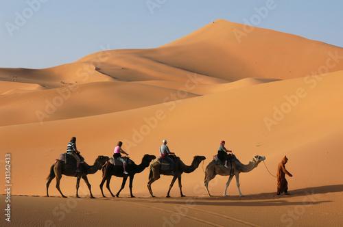 Fotobehang Kameel Camel Caravan in Sahara Desert