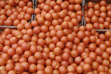 DENMARK_vegetables sale
