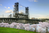 Steel Bridge and Cherry Blossom Trees in Portland Oregon