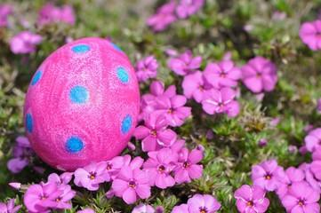 Pinkes Osterei mit blauen Punkten