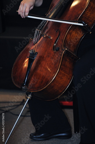 classical music bass instrument player