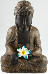 petit Bouddha fleuri, fleur de frangipanier