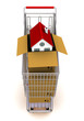 house in an open cardboard box, standing on trolley