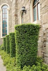 Window with gardens
