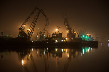 Cranes at midnight in the calm bay