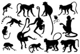 different monkey silhouettes isolated