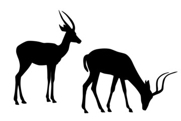 two antelope  black silhouettes