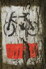 closeup of painted bicycle route sign  on bark of tree