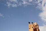Masada in ISRAEL/UNESCO World Heritage poster