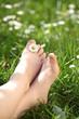 Kinderfüsschen im grünen Gras mit Blümchen