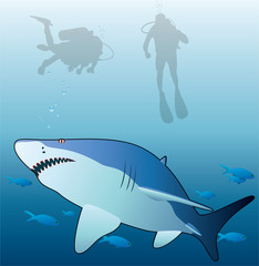 vector illustration of shark, tropical fishes and scuba divers