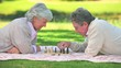 Mature couple playing chess