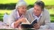 Mature couple reading a book