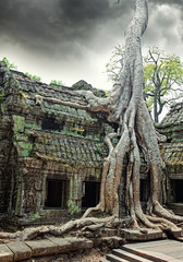 temple of Ta Prohm in Angkor Wat
