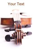 violin music string art instrument poster