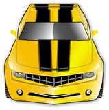 2010 / 2011 Car