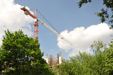 Crane among the trees.
