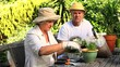 Mature couple potting herbs in the garden
