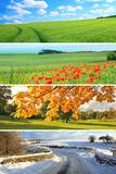 Fototapety 4 seasons collection