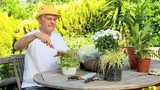 Mature man potting plants