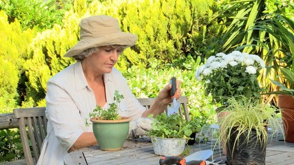 Woman re-potting plants in the garden