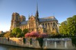 Paris (France) - Notre Dame Cathedral - 31452684