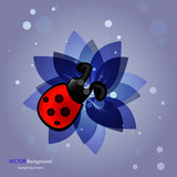 Abstract flower with ladybird background. Vector