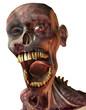 verfaulter Kopf eines Zombies