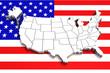 USA map on flag. 3d