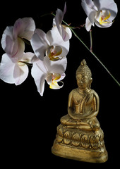 bronze Buddha in a lotus position and an orchid flower