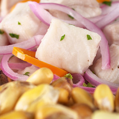 Peruvian ceviche made out of raw dogfish (Spanish: tollo)