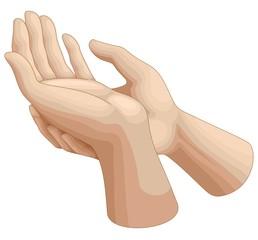 Mani in preghiera-Prayer Hands-Vector