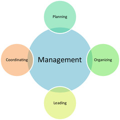 Management business diagram