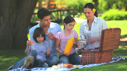 Family packing away their picnic things