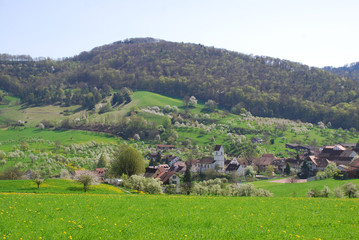 remote Swiss village in peaceful spring setting