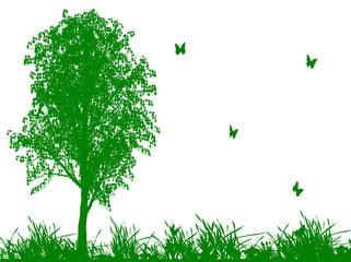 蝶の飛ぶ草原
