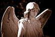 Statue of a young angel in sepia shades