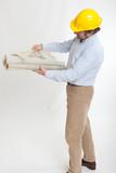 Construction professional