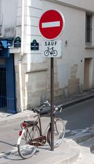 Pedestrian street in Paris