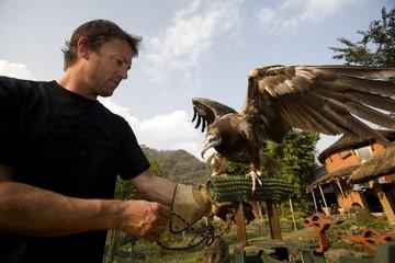 Man&Egyptian Vulture(Neophron Percnopterus), Pokhara, Nepal