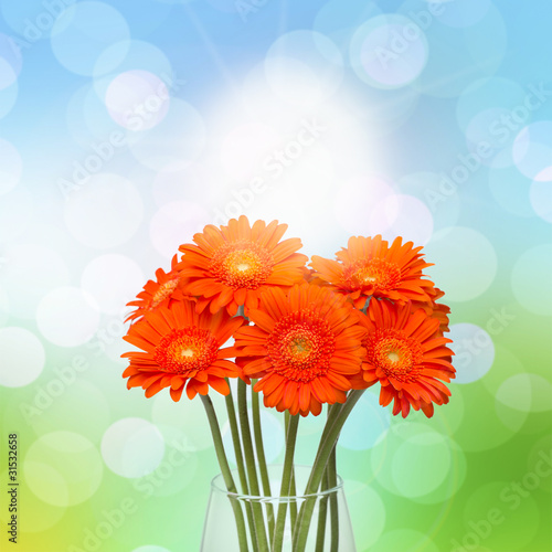 Gerberas in vase on spring background