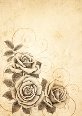 Freehand drawing rose 03