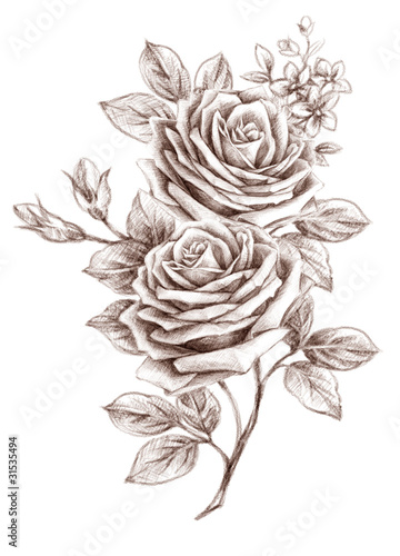 Freehand drawing rose 01