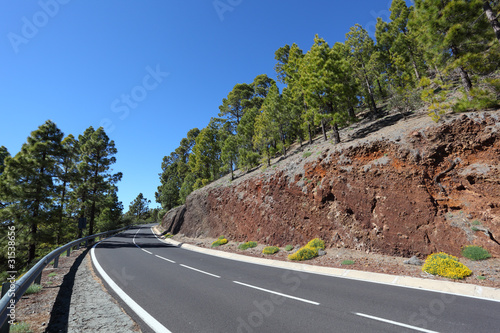 Mountain road in Teide National Park, Tenerife Spain
